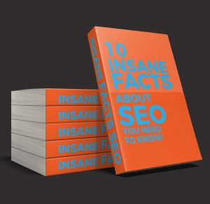 10 seo facts book